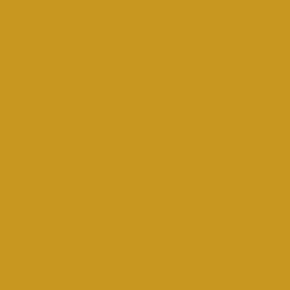 Download Pantone TPG Sheet 16-0952 Nugget Gold | Pantone Canada | Polycolors