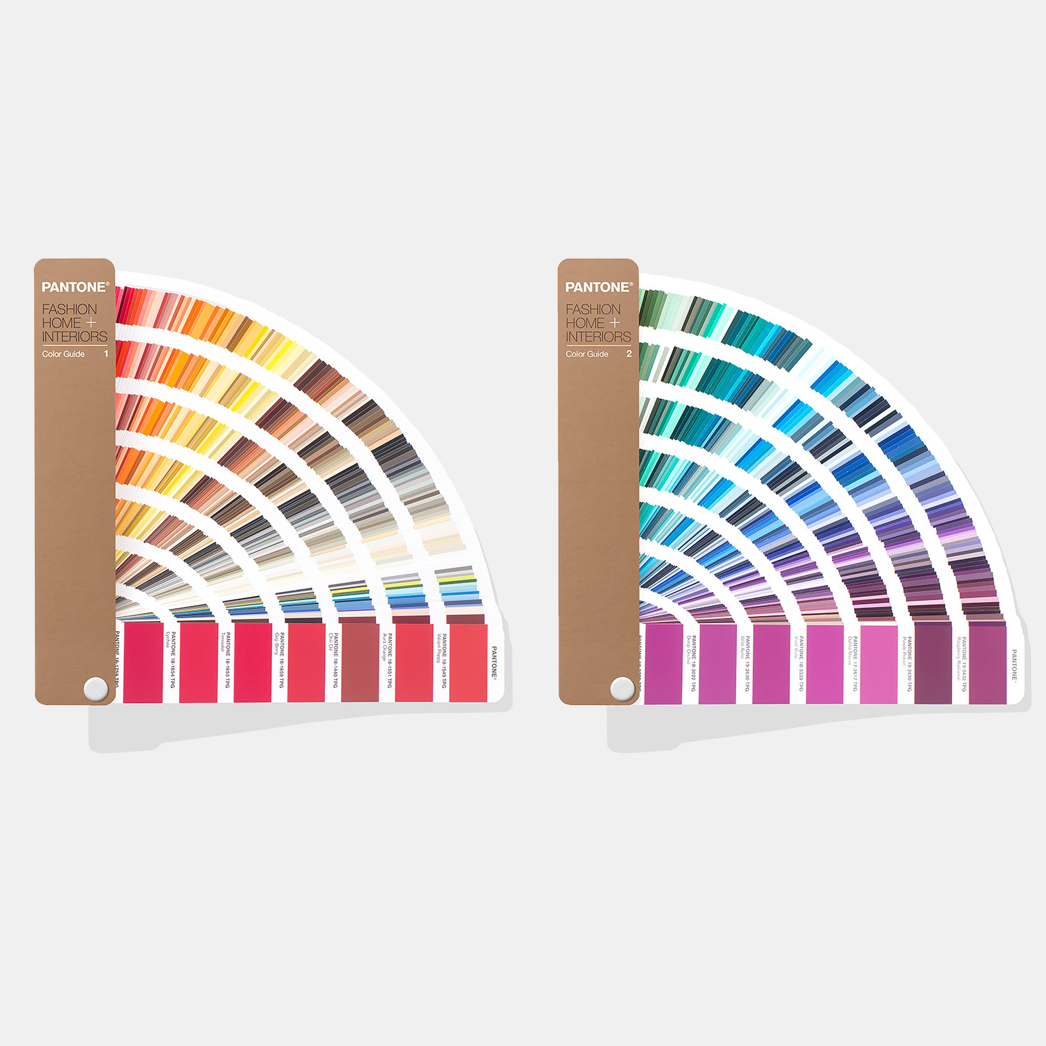 Pantone Fhi Color Guide 2019 Edition A Two Guide Set For Hard Home And Fashion Accessories Pantone Canada Polycolors